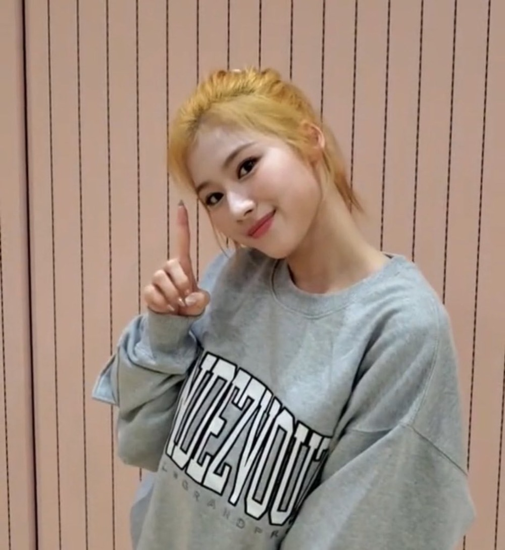 "랑데부 ""트와이스 사나"".RDVZ®  20SSAPPLIQUE SWEAT TOP GREY"
